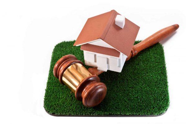 Представление интересов заказчика при предоставлении земельного участка на торгах