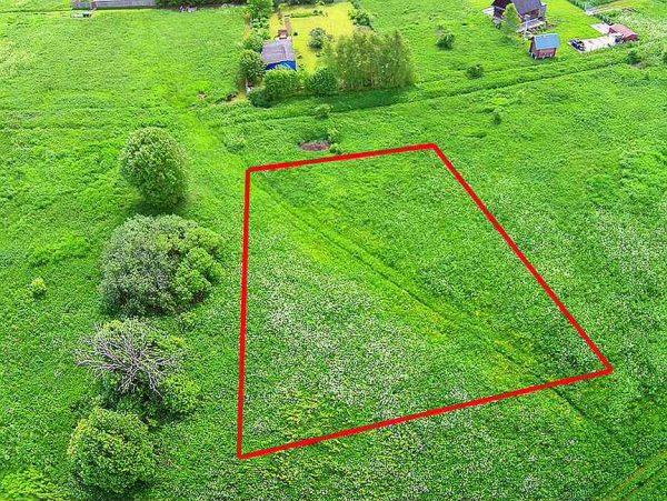 Установление (уточнение) границ земельного участка в натуре