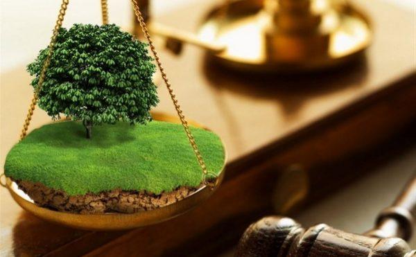 Судебное разрешение земельных споров